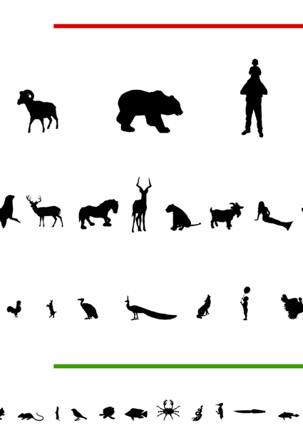 Animal Chart Closeup